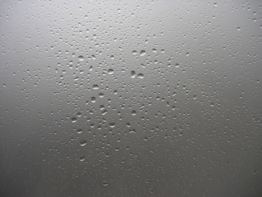 Sholette Rain